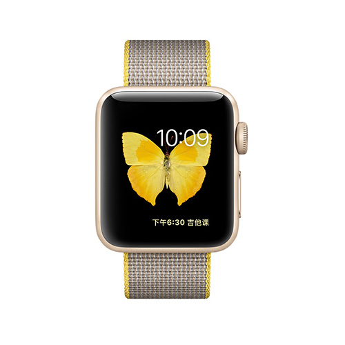 苹果 Apple Watch Series 2